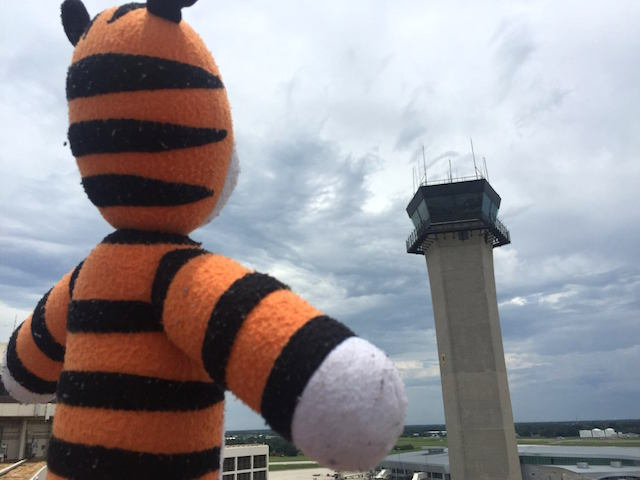 Hobbes-stuffed-tiger-Tampa-Airport-FBPage
