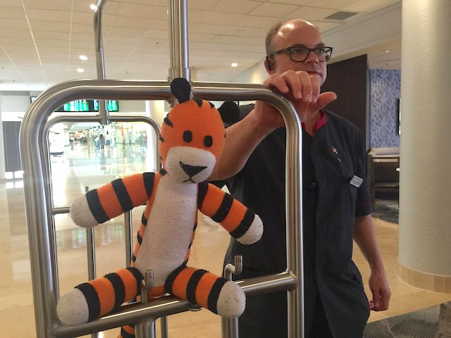 Hobbes-stuffed-tiger-hotel-Tampa-Airport-FB-photo