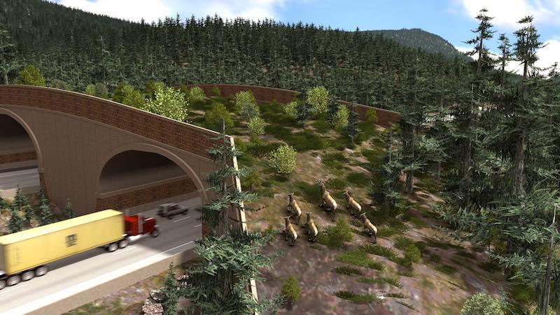 New Green Overpass Will Let Wildlife Cross 6 Lanes Of Highway