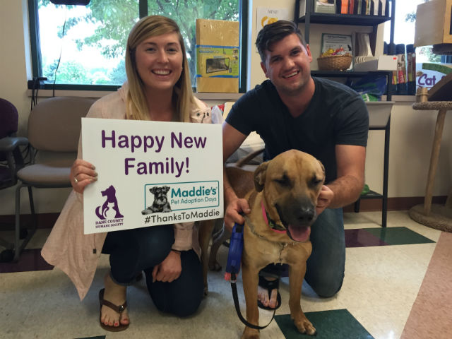 Maddies Fund Adoption Event Sign Submitted