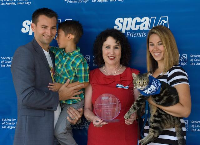 Tara Tabby Cat Award  Family SPCALA Facebook