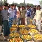 bangladesh farming - Shykh Seraj