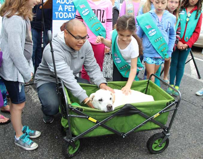 bucket list dog and Girl Scouts-submitted