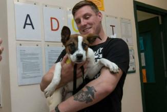 maddies fund adoption event man and dog facebook