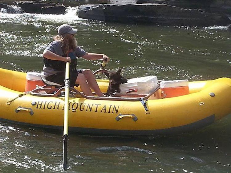 Nolli bear in raft 1 by Dallas Abadie
