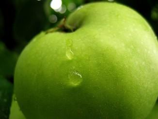 green apple CC .tungl