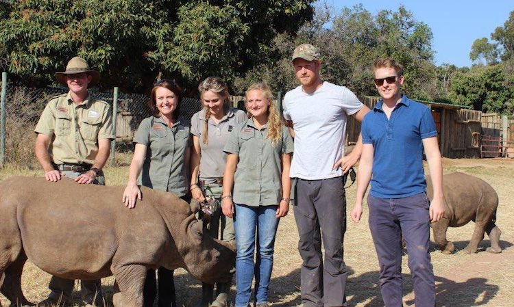 Prince Harry with Rhino-AfricanConservationExperience-FB-750px
