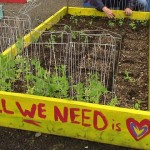 Rooftop garden -Metro Atlanta Task Force For Homeless fb