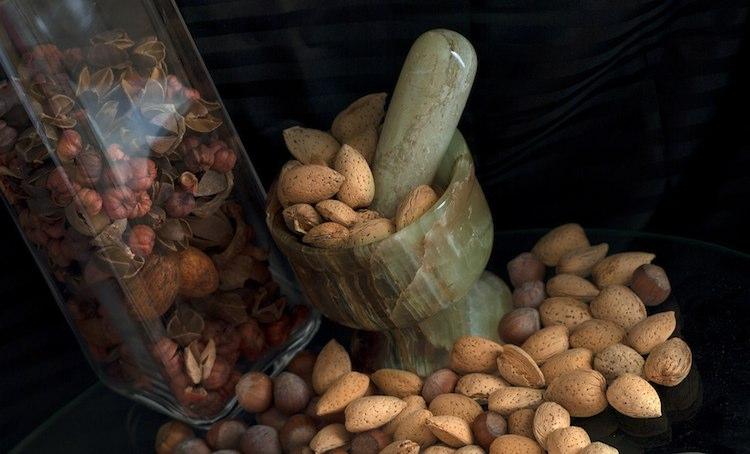 nuts CC DeusXFlorida