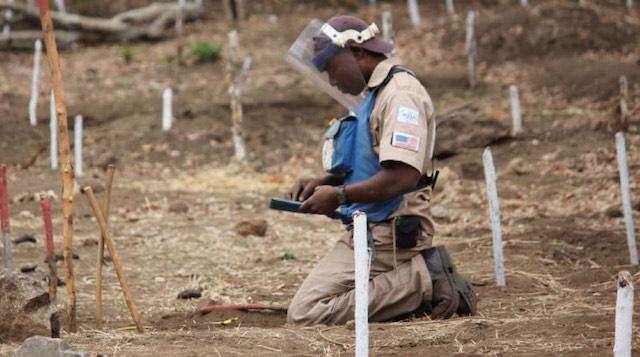 Mozambique land mine free 2 Release HALO Trust