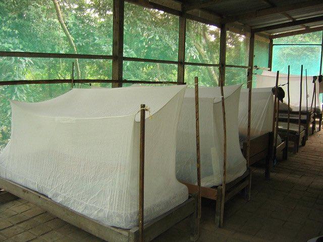 mosquito nets CC Phillie Casablanca