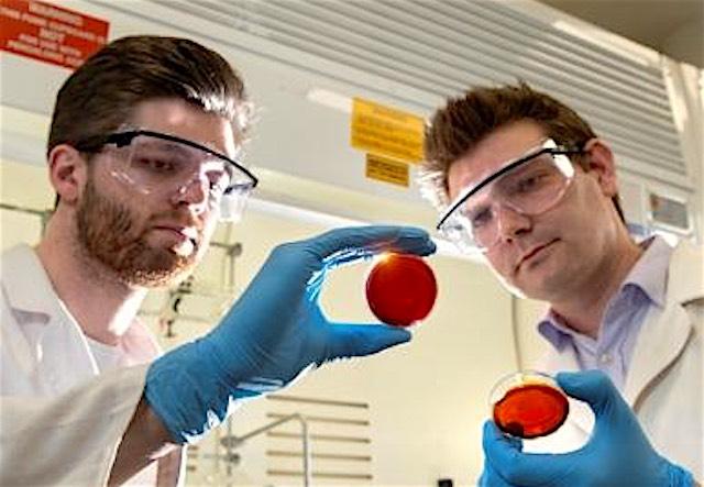 Max-Worthington-and-Dr-Justin-Chalker_released Flinders University