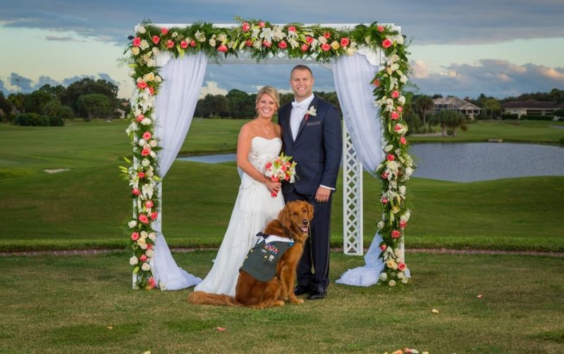 dog is best man-permission-bradhallstudios