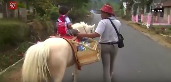 horse of books Indonesia-Reuters-youtube