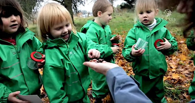Outdoor preschool screenshot Forest School UK