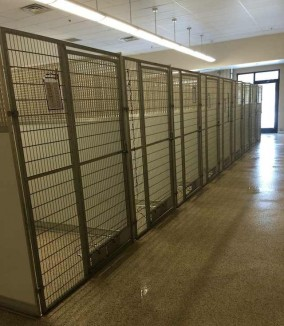empty animal shelter Friends of Summit County Animal Control facebook