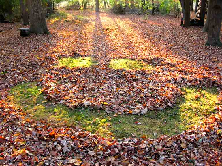 raked-leaves-smile-CC- trpnblies7