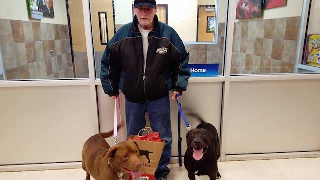 Veteran James Park and Dogs FB Lindsay Marie