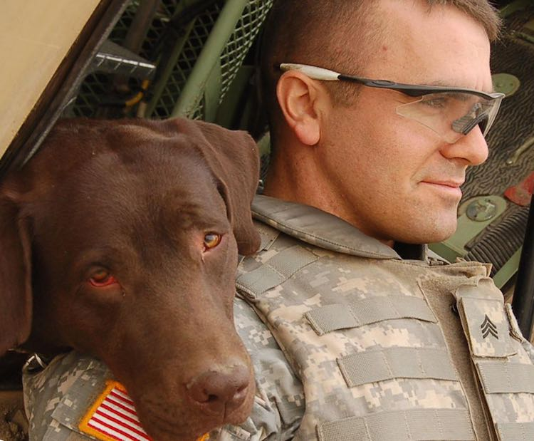 dog and soldier-CC-Us Army-750