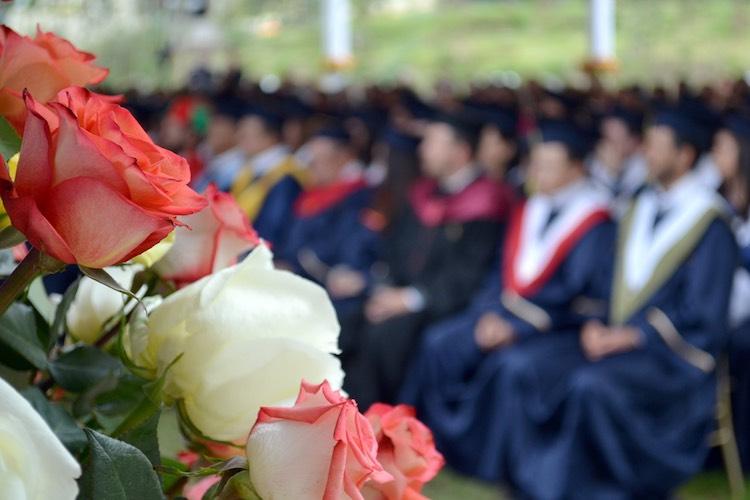 graduates CC sentraldigital