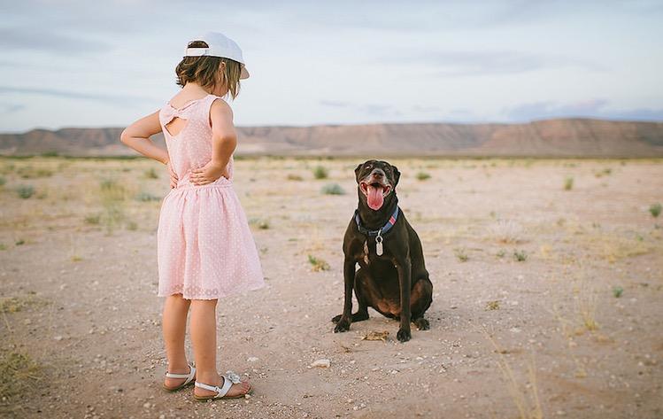 Happy Dog - CC Demandaj