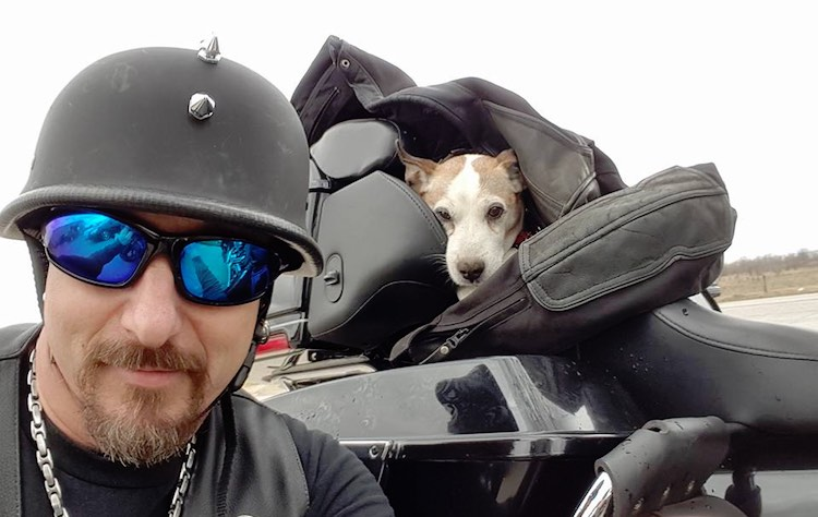 Motorcyclist saves dog FB Brandon Turnbow