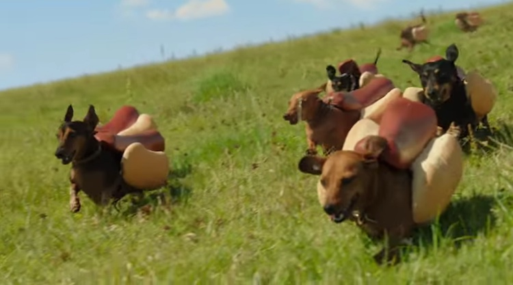 Wiener Dog Commercial - Screenshot