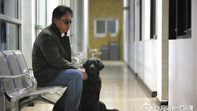 blind-man-returned-dog-weibo
