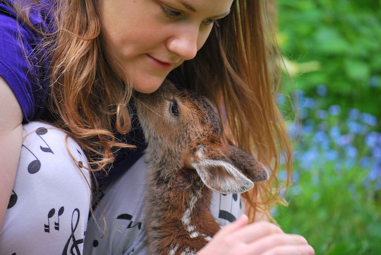 Fawn and Girl - Released Karen Parsons