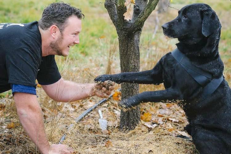 Truffle Hunting Dog released Jayson Mesman