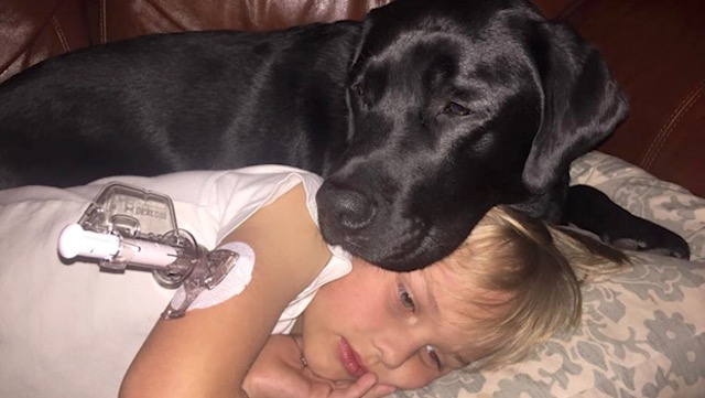 boy with diabetes and service dog-family pic