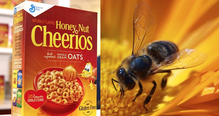 Honey Nut Cheerios Bee Released General Mills CC vojta001