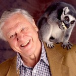 David Attenborough-w-animal-square