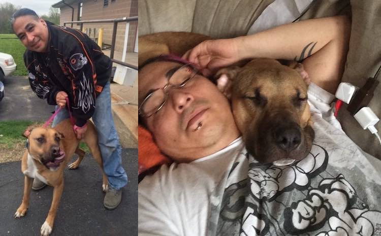 Stolen Dog Can't Contain Himself When Reunited with Man After 2 Years (WATCH)