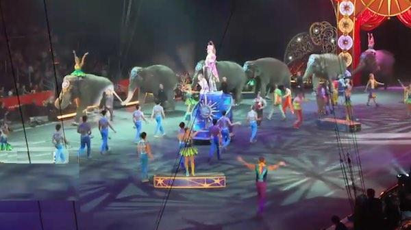 ringling bros last elephant show-livestream