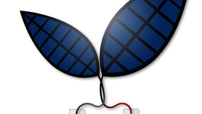 Artificial Leaf-cc-Jessica Polka-Harvard