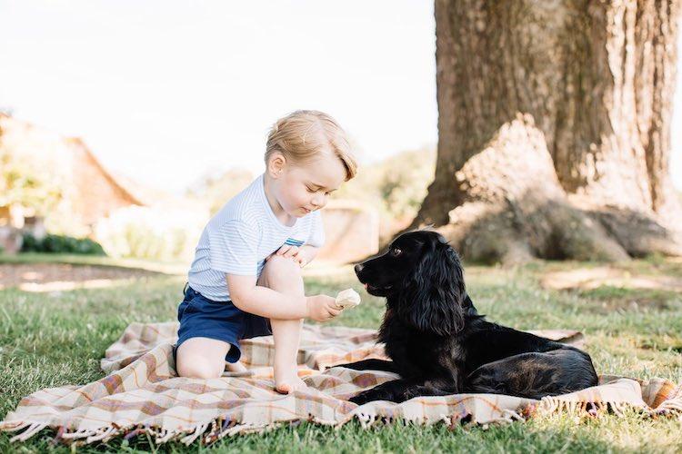 Prince George 3rd Birthday Photos FB The Royal Family