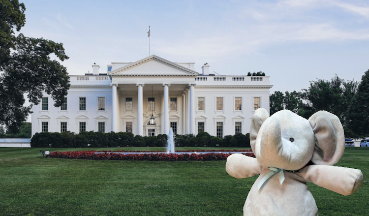 White House Elephant Toy CC Imgur