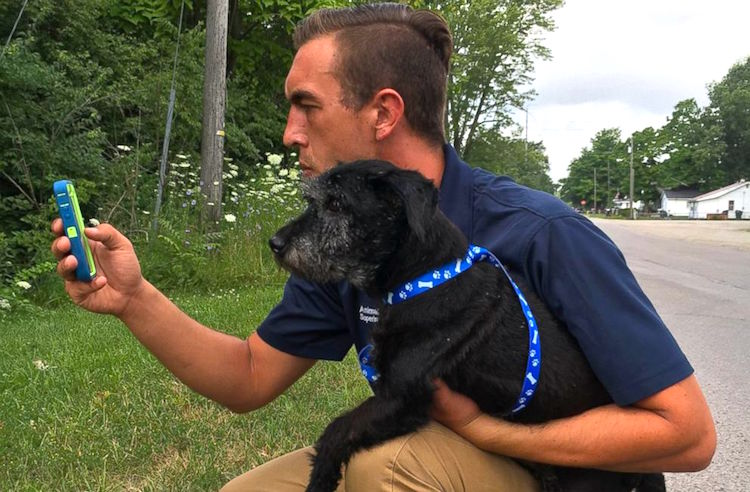 pokemon dog walkers Released Muncie Animal Shelter