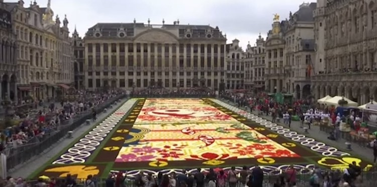 Brussells Flower Carpet-Youtube