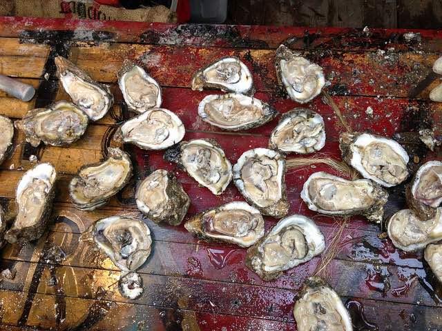oysters-cc-editor-b