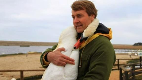 swan-hug-youtube