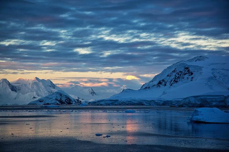 antarctica-cc-nomis-simon
