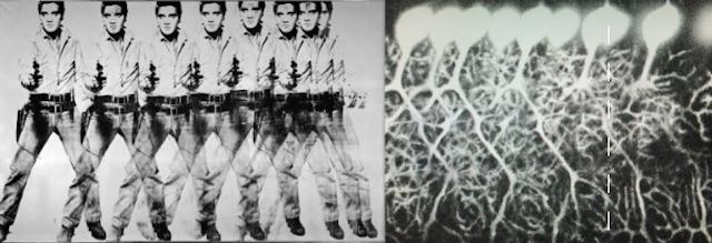 elvis-and-neurons-dana-simmons