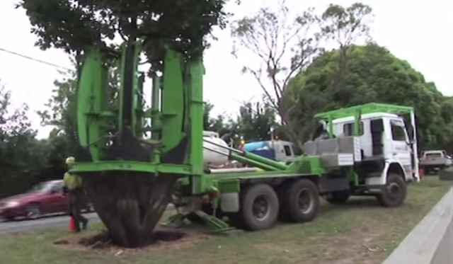 tree-moving-machine-youtube
