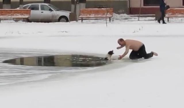 shirtless-man-rescuing-dog-youtube