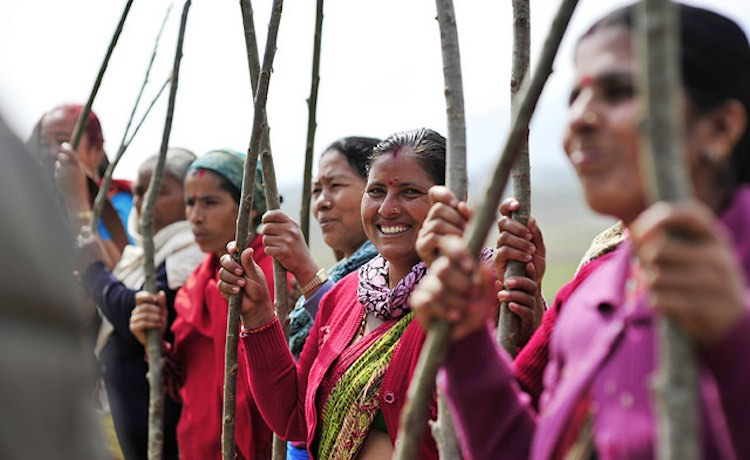indian-women-with-saplings-cc-bioversity-international