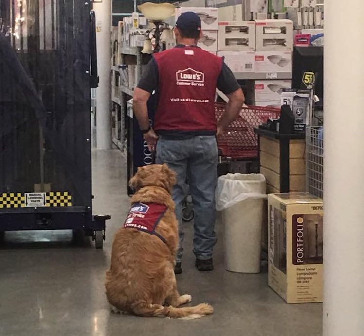 lowes-worker-and-dog-facebook