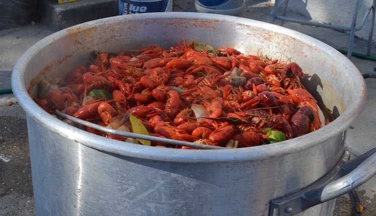 Crawfish Boiling in Pot-McKinley Corbley
