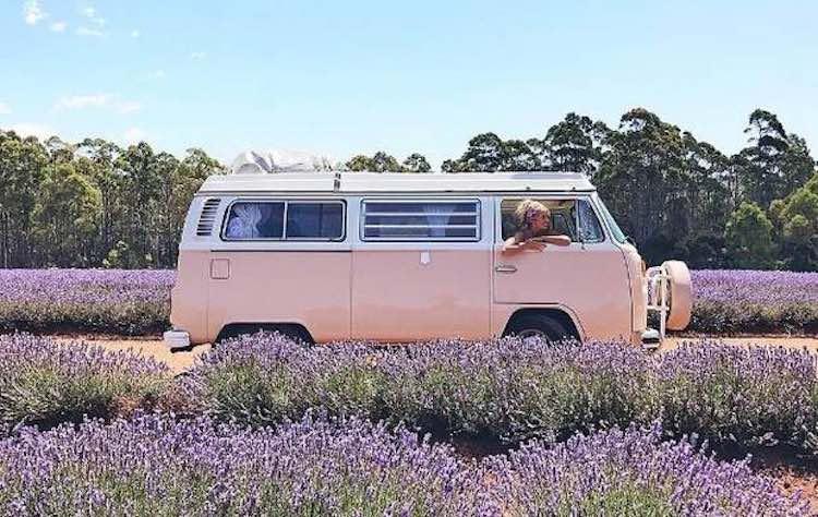 VW Van-Instagram